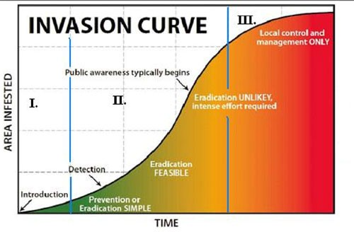 Figure 2: Invasion Curve (image from Southwest Montana Science Partnership's Module on Plants and Pollinators